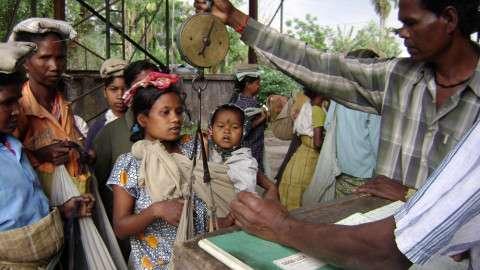 Tea-Plantation-worker-Darj